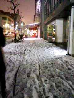 名古屋にも雪降った★.jpg